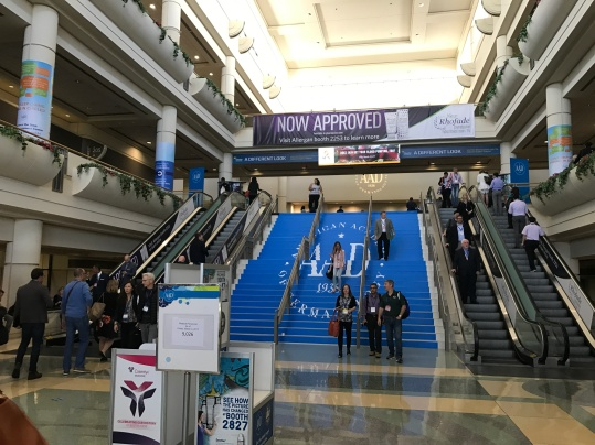 Walking into the Convention Hall the AAD logo is prominent.